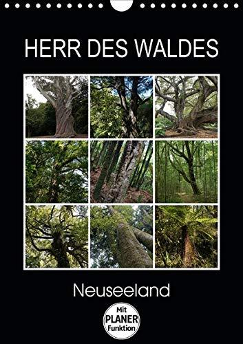 Herr des Waldes - Neuseeland (Wandkalender 2020 DIN A4 hoch): Neuseelands Pflanzen - ökologisch sehr vielfältig - entwickelten sich langsam im ... 14 Seiten ) (CALVENDO Natur)