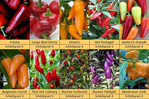 Bunt, Exotisch und Mittelscharf, Chili Pepperoni Samen, 10 Sorten Schärfe 6