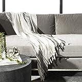 Safavieh Alita Metallic Throw Blanket, White/Grey/Silver
