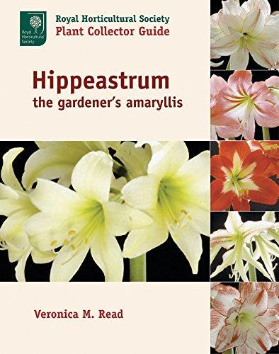 Hippeastrum: The Gardener's Amaryllis...