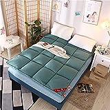 Aany Colchones gruesos futón suave plegable portátil colchón, doble individual futones japoneses, tapete plegable de tatami japonés (tamaño: 90 x 200 cm, color: C)