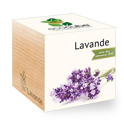 Feel Green Ecocube Lavande Certifiées Bio, Idée Cadeau (100% Ecologique), Grow-Your-Own/Kit Prêt-à-Pousser, Plantes Dans Des Cubes En Bois 7.5cm, Produit En Autriche