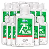 Cleace Advanced 75% Alcohol Hand Sanitizer Gel, 12 small bottles, 3.38 oz each (40.5 oz total)