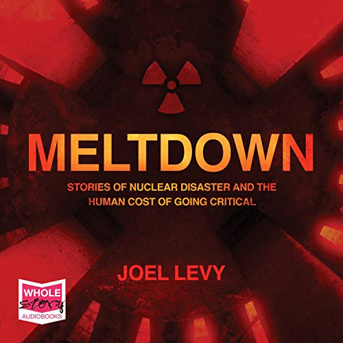 Meltdown: Nuclear Disaster and the Human Cost of Going Critical