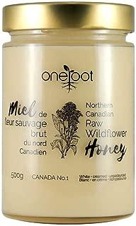 Oneroot Organic Natural Raw Canadian Wildflower Honey 17.6 Ounce (500gram) (WILDFLOWER)