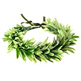 DreamLily Greek Headpiece Bridal Leaf Crown Green Bridal Halo Crown Leaf Flower Crown Bohemian Headpiece Grecian Wedding Crown NC13 (A-Green)