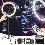 Neewer Luce LED ad Anello 16 pollici Supporta il Touch Control Manuale con Schermo LCD, Controllo Remoto e Multi-Luce 3200-5600K Supporto per il Trucco Video Youtube Blogger Salon(Bianco)