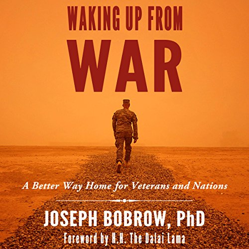 Waking Up from War cover art