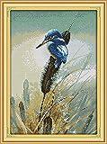 Cruz para adultos Kits de punto puesta Pájaro, en, pasto o césped,lienzo preimpreso 11CT Bordado de kit de punto de cruz de arte DIY,regalo principiantes para la decoración del hogar,40x50cm