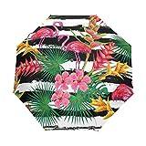 My Daily Paraguas tropical con diseño de hojas de palma, diseño de rayas y rayas, para viajes, apertura automática, antiUV, resistente al viento, ligero, compacto y plegable