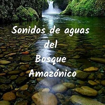 Sonidos de Aguas del Bosque Amazónico