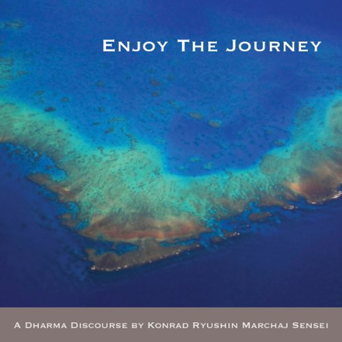 Enjoy the Journey audiobook cover art