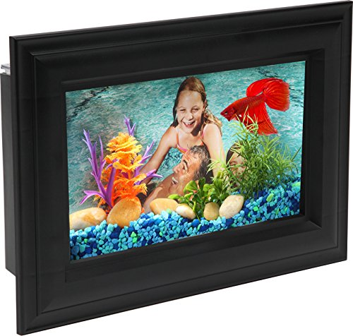 AquaScene .75-Gallon Fish Tank with LED Lighting