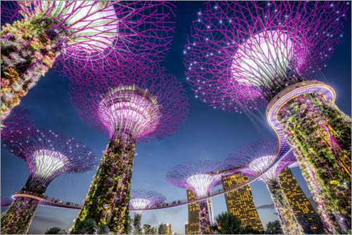 Posterlounge Wood print 100 x 70 cm: Supertrees in Singapore by Jan Christopher Becke