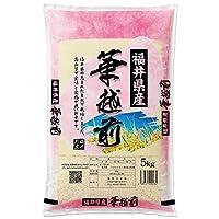 【出荷日に精米】 福井県産 華越前 ハナエチゼン 白米 5kg 令和2年産