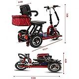 Eléctrico portátil 3-scooter de rueda plegable silla de ruedas eléctrica 48V20A de litio 50 kilometros duración de la batería / 700W / batería de la silla de ruedas scooter de ancianos al aire libre