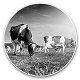 Impresionantes pegatinas de vinilo (juego de 2) 15 cm (bw) – Cool Dairy Cows Animals Farmer Farm Fun Decals para portátiles, tabletas, equipaje, libros de chatarra, neveras, regalo genial #41270
