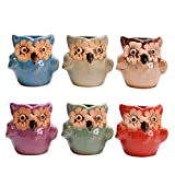 AYUSHOP Succulent Plant Pots Búho, 2.75 Inch 6 Pack Ice Crack Mini Ceramic Flower Cacti Pot Planter Container Set with Drain Hole for Garden Home Office Tablet Desk Ideal Gifts, Colorful