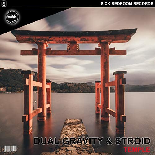 Dual Gravity & Stroid