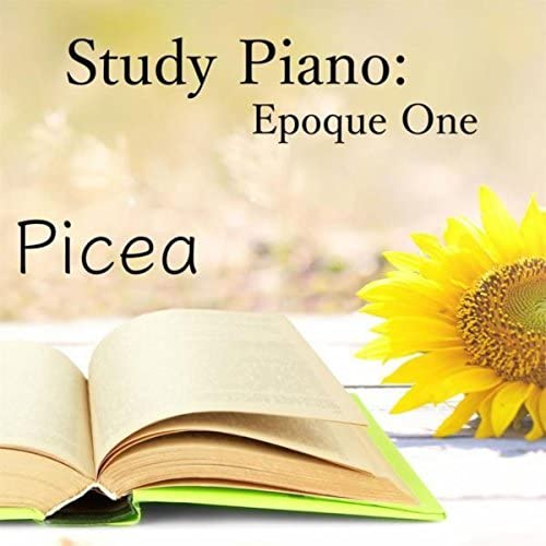 Studying Music, Classical Study Music & Exam Study Classical Music Orchestra