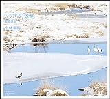 いのちの景色 釧路湿原