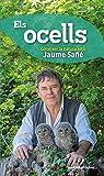 Els ocells: Conèixer la natura amb Jaume Sañé: 1 (Conèixer, Sèrie Éssers vius)