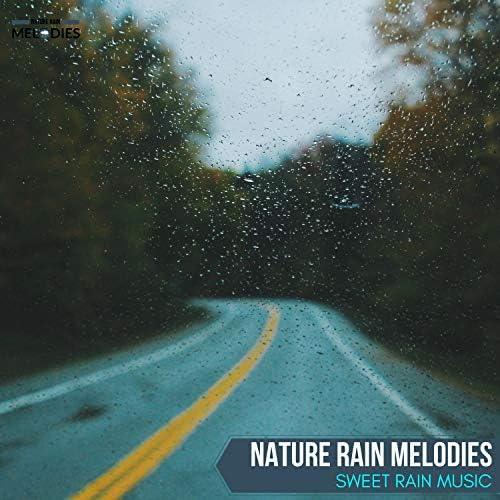 The Rain Library & Calm Music