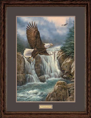 Wild Wings Majestic Flight - Bald Eagle Framed Limited Edition Print by Rosemary Millette