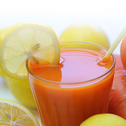 にんじんレモンジュース 15pお試しセット  100cc×15パック 冷凍ジュース