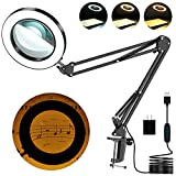 Magnifying Glass with Light and Stand,8-Diopter Glass Lens 5X Magnifying Lamp...
