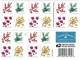 Winter Berries Book of 20 First Class US Postage...