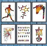 Lienzo Pintura Carteles Molécula Dislocación del hombro Dislocación de la articulación del hombro Lenguaje de signos Anatomía Arte de la pared Decoración para el hogar hospital-30x42cmx3 Sin marco
