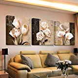 Swallow 3 Piezas de Arte de Pared decoración para el hogar Lienzo Cuadros Abstractos...
