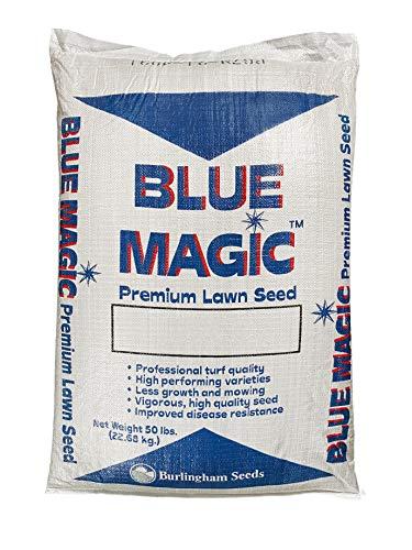 Burlingham Seeds Blue Magic Athletic Mix   50% Kentucky Bluegrass 50% Perennial Ryegrass   Blue TAG Certified Grass Seed (50 lbs (10,000 sq ft))
