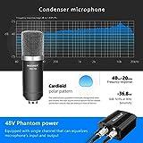 Zoom IMG-2 neewer nw 700 microfono professionale