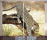 ABAKUHAUS Exotisch Rustikaler Vorhang, Wilde Katze des Leoparden auf Baum, Wohnzimmer Universalband Gardinen mit Schlaufen und Haken, 280 x 225 cm, Gelb
