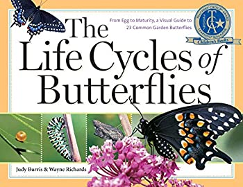 The Life Cycles of Butterflies  From Egg to Maturity a Visual Guide to 23 Common Garden Butterflies