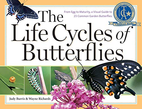 The Life Cycles of Butterflies (From Egg to Maturity, a Visual Guide to 23 Common Garden Butterflies)