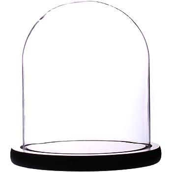 "Artlass Glass Cloche Bell Jar Display Dome with Black Wooden Base 6"" x 7"""