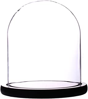 Artlass Glass Cloche Bell Jar Display Dome with Black Wooden Base 6