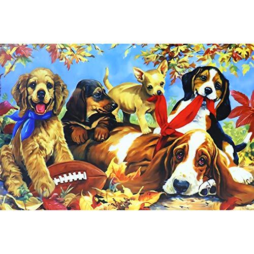 Lunriwis Puzzle 1000 Piezas,Mundo Animal,DIY Rompecabezas Lindo Cachorro, Intelectual Educativo Divertido Juego Familiar Puzzle, Juguete Regalo para Niños Adultos