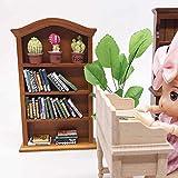 Liyeehao Estantería en Miniatura de fabricación de precisión de Alta simulación, Muebles en Miniatura de casa de muñecas de Estudio, para Sala de Estudio Tienda de Libros Sala de Estar para niños