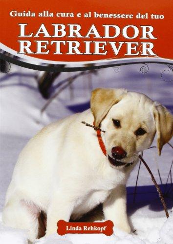 Guida alla cura e al benessere del tuo labrador retriever