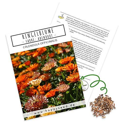 Ringelblumen Samen (Calendula Officinalis) - Vielseitige Heilpflanze mit essbaren Blüten & ideal für eine bunte Blumenwiese (Abendrot)