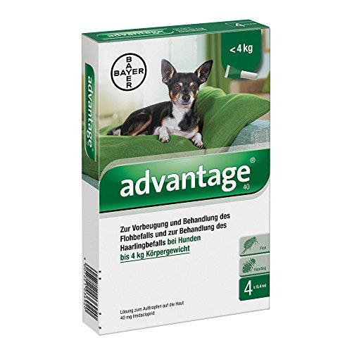 Bayer Vital GmbH Advantage 40 für Hunde Lö 4 STK