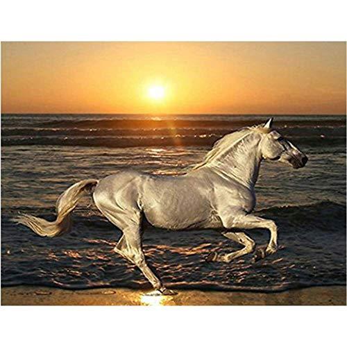 ZXFMT 5D Diamant Schilderij, Strand Zonsondergang Landschap, Naaldwerk Diy Diamant Borduurwerk Paard Dier Beeld Mozaïek