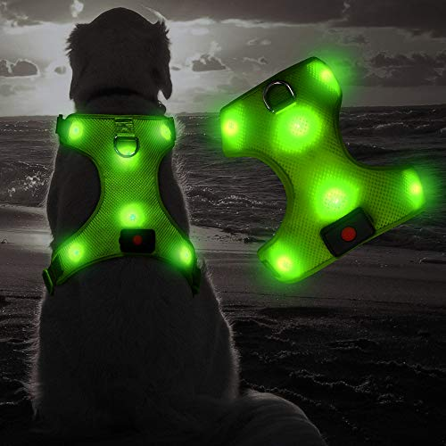 Flashseen LED Dog Harness, Lighted Up USB Rechargeable Pet Harness, Illuminated Reflective Glowing Dog Vest Adjustable Soft Padded No-Pull Suit for Small, Medium, Large Dogs (Green, L)
