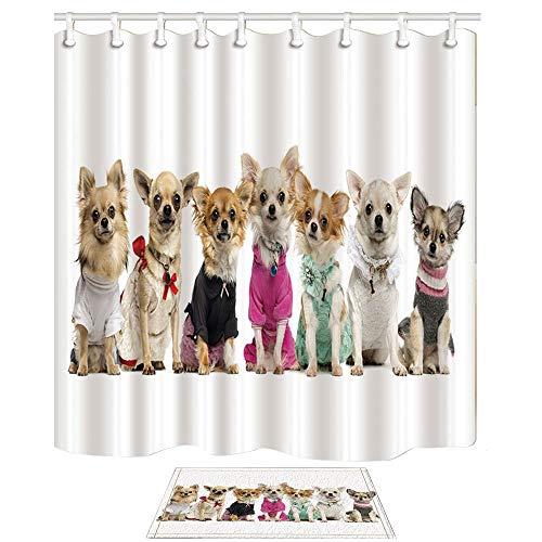 bbbbbb Tier Duschvorhang und Matten Set, Chihuahua Hunde tragen stilvolle Kleidung niedlichen Haustier, e Stoff Badvorhänge