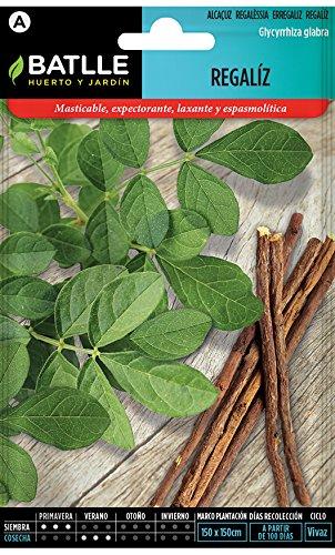 Semillas Aromáticas - Regaliz - Batlle