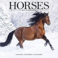 Horses 2021 Wall Calendar